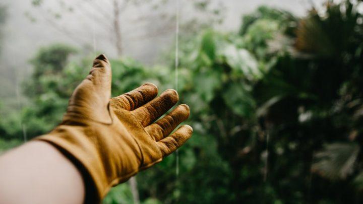 Få hjælp til dit havearbejde